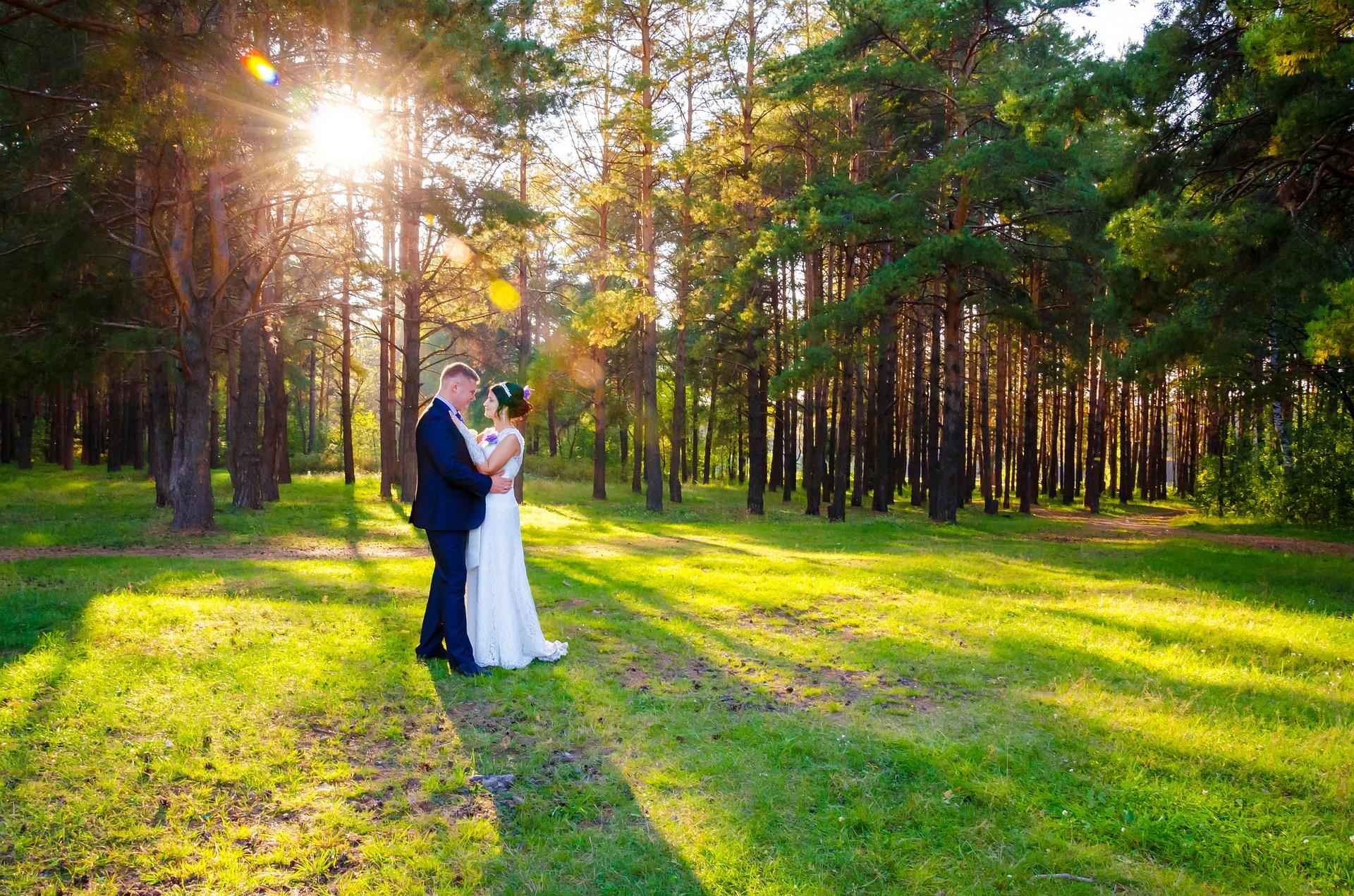 wedding-628515_1920